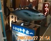 20080927215444.jpg